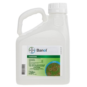 Banol 1 Gallon Bottle Product Package