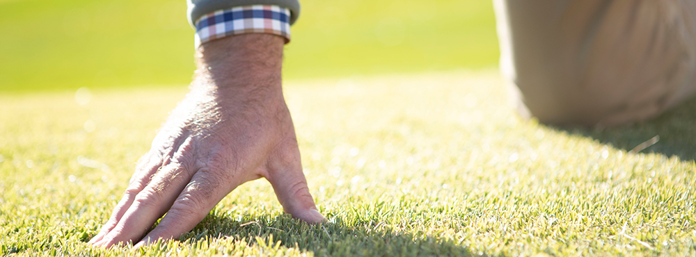 Hand Touching Healthy Turf for GIS 2019